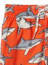 Köpek balığı desenli şort mayo