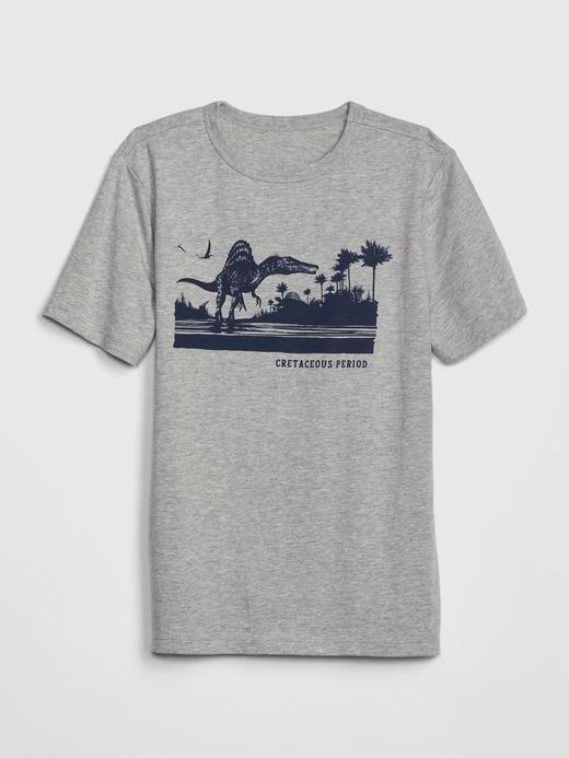Erkek Çocuk gri Erkek Çocuk Kısa Kollu T-shirt