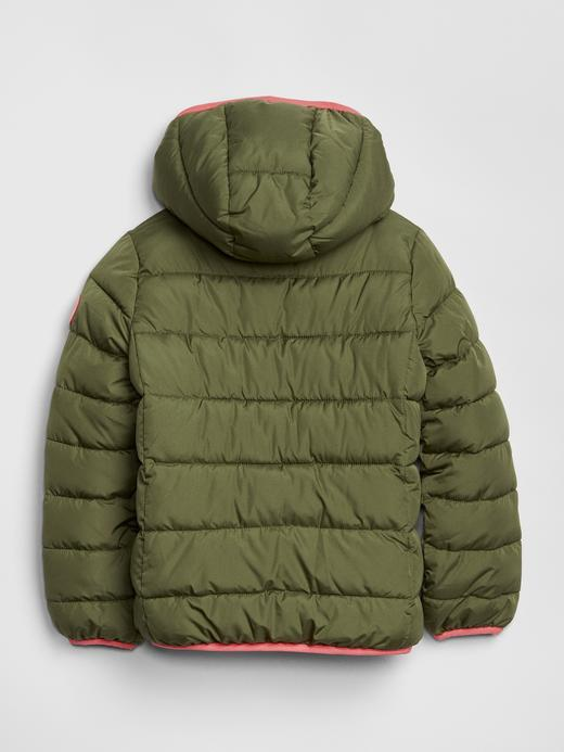 ColdControl  Puffa Mont