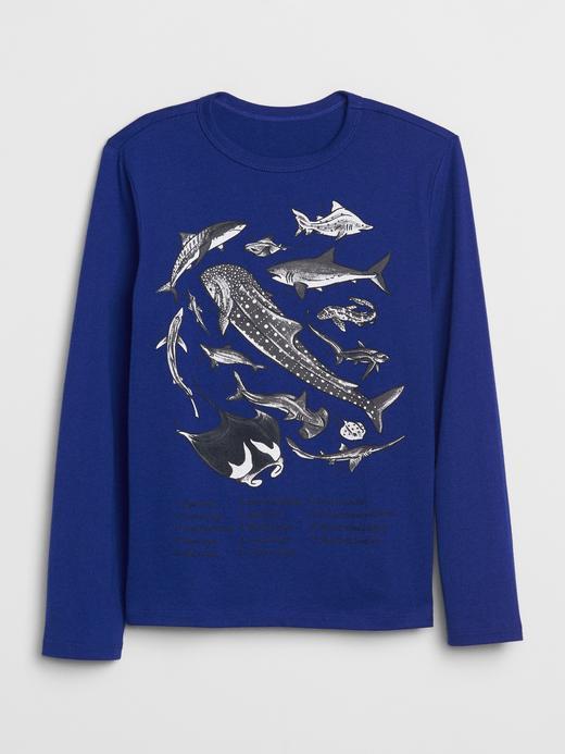 Erkek Çocuk Mavi Grafik Uzun Kollu  T-Shirt