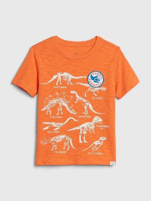 Erkek Bebek Turuncu Grafik Kısa Kollu T-Shirt