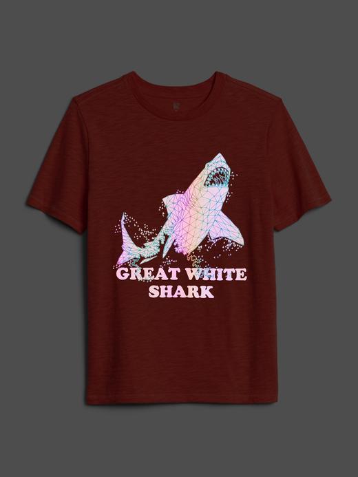 Erkek Çocuk Kırmızı Flaş Grafik Kısa Kollu T-Shirt