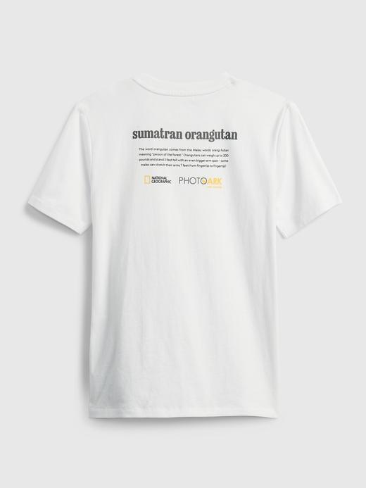 Erkek Çocuk Siyah National Geographic Grafik Desenli T-Shirt