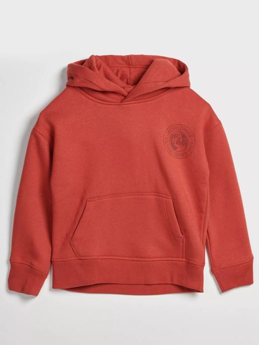 Erkek Çocuk turuncu Logo Kapüşonlu Sweatshirt